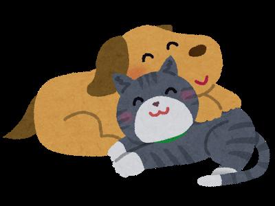 【犬のトイレ】猫ニモマケズ?
